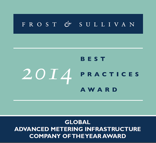 Landis+Gyr Accepts Frost & Sullivan Global AMI Company of the Year Award